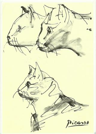 Uit H4 Dieren. Picasso tekende en schilderde vele katten, met diverse materialen en op allerlei manieren.